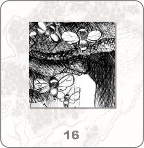 forestium-16