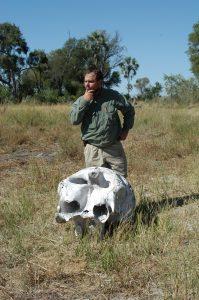 Near death experiences - Okavango Delta, Botswana (bush walk)