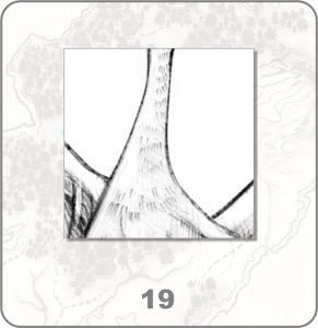 forestium-19