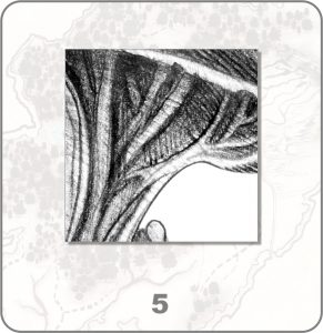 forestium-5