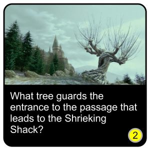 harry-potter-quiz-26
