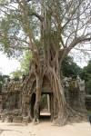 Travel photo Cambodia Angkor wat